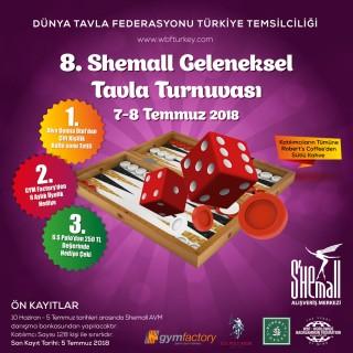 tavla-turnuva